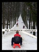 Fun in the snow by goldmines