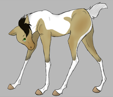 Foal adopted by TechnoWolf9000