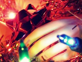 Waiting For Christmas I by CheyenneRalphsPhotos