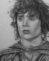 Frodo by S3V4STR4