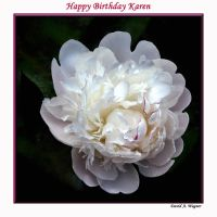 Happy Birthday Karen by David-A-Wagner
