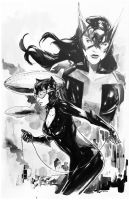 Huntress and Catwoman by Peter-v-Nguyen