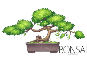 Bonsai by lires