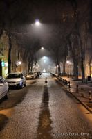 street and fog by BorkoH