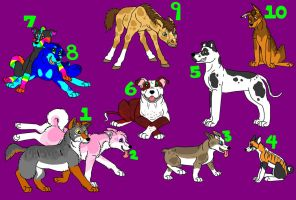 Adoptables All Taken by HolidayOetep