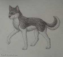 Shadow Da Husky :) by Tienala