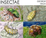 Insectae Preview 3 by shaotemp