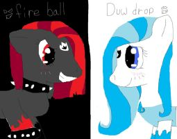 fireball and dewdrop by artfreak26