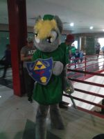Derpy Hooves cosplaying Link 02 by brandonale