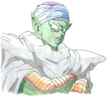 Piccolo by Maetelsama