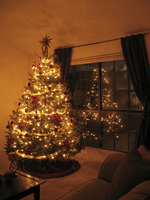 2009 Christmas Tree 2 by mrskupe