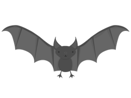 Gift: Bat by apparate