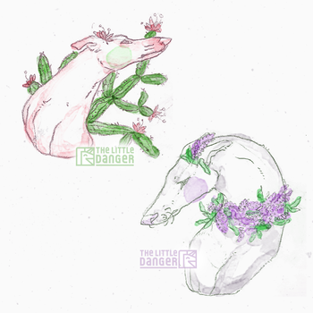 Little greyhounds with plants by TheLittleDanger