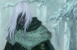 drizzt crop by akakuma
