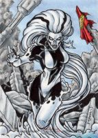 DC: Women of Legend - Silver Banshee by tonyperna