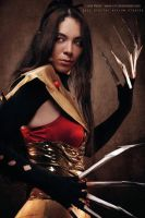 Lady Deathstrike _Warrior by dreamerl85