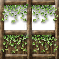 Hall wall with top frame and 2 x ivy by Spyderwitch