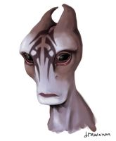 Young Mordin :D by drawanon