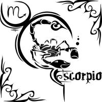 Zodiac Sign Tattoo : Scorpio by MPtribe