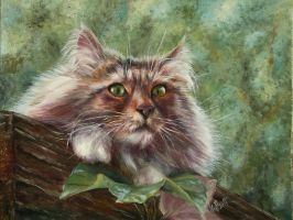 Cat on the roof (oil) by alartstudio