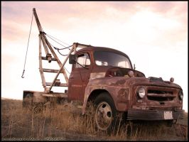 Real Life Mater by Ookamiko