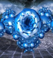 The Blue Rose by Lion6255