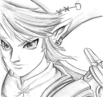 LINK |Twilight Princess by otakulu