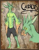 Character: Cadicus by zilowar