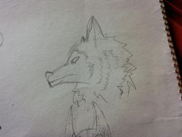 My Wolf Head Attempt by The-Fire-Magician
