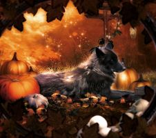 Pumpkin Wolf by MelieMelusine