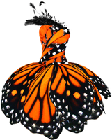 Butterfly Dress Png by MaddieLovesSelly