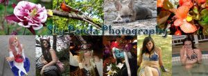 Photography Banner by SkyPandaPhotography