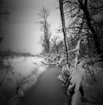 Winter over the stream by Mr-Monster-Mutt