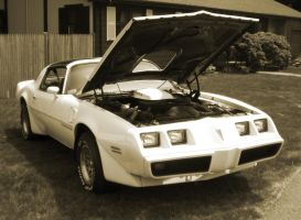 Pontiac Trans Am Bandit by 3dmirror-stock