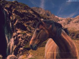 Horse in the mountain by l3lackangels