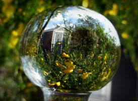 Garden shed refraction by April-Mo