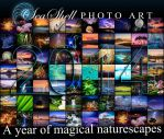 2014 Naturescapes by Questavia