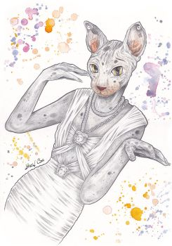 Couture Cat by Dacil