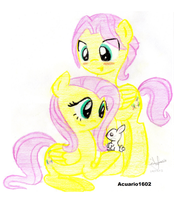Fluttershy and Buttersotch by Acuario1602