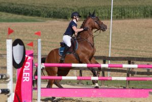 Show Jumping Refusal Series 9 by LuDa-Stock