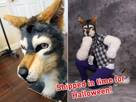 ONLY ONE DAY LEFT! Want a Halloween Costume? by Tsebresos