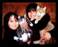 Two Boys and Cats by afox2004