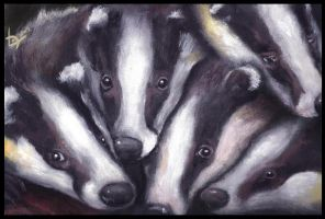 Badgers by Lupuna