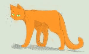 Warriors: Firestar by XxAMVxX