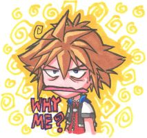 Why Sora by songosai