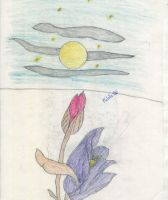The moon and the flower by Rose-and-Antauri