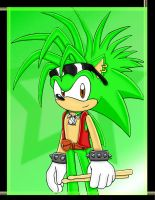 Manic the Hedgehog by Jade-the-Tiger