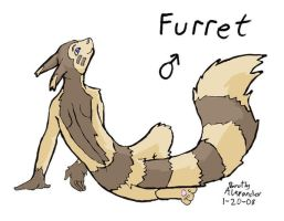 pokemorph number162 furret by Tatta-doodles