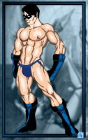 Nightwing Jock by Furyian