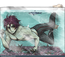 Rin In The Fish Tank - Free! by minibuddy